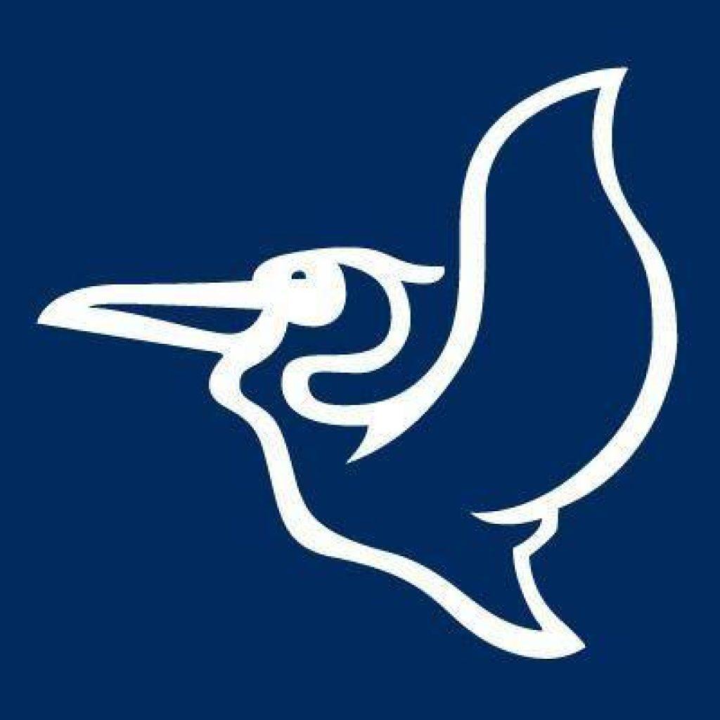 Pelican International